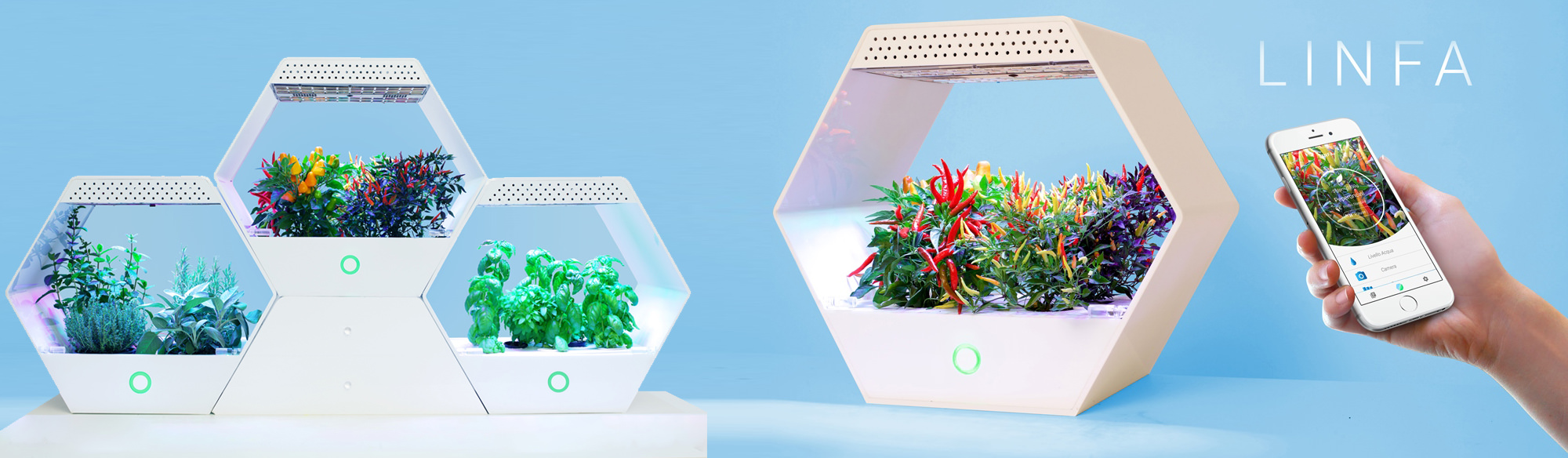 Vertical farm: sostenibilità ed efficienza per l'agricoltura 3.0