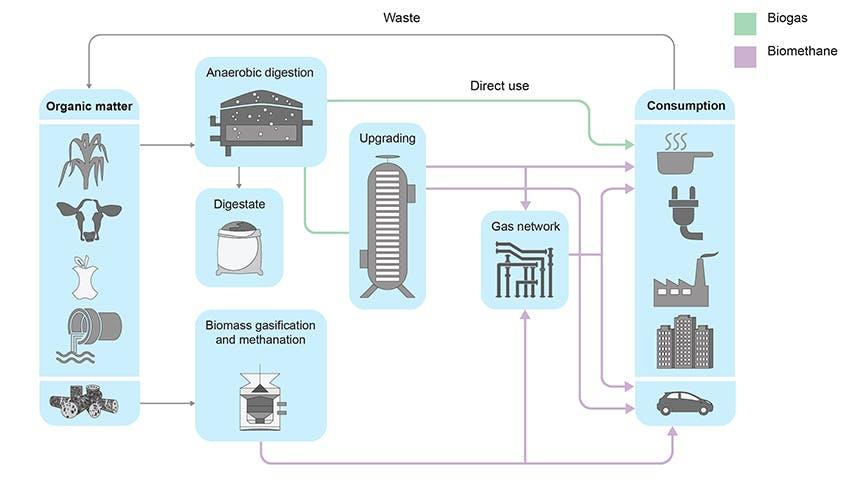 Processo di creazione di biogas e biometano
